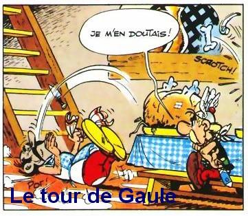 Sanglier-Tour-de-gaule-